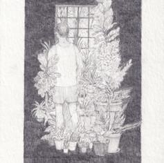The Long Bloom ( garden of respite )