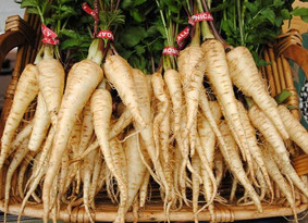 The Parsnip - it's the Cooks & Partners Ingredient of the Month.