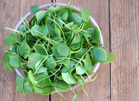 Wonderful watercress!