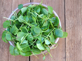 Ingredient of the Month: Watercress