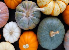 Ingredient of the Month: Pumpkin