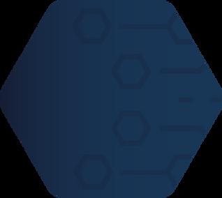 Bringing It Together Hexagon - Website.