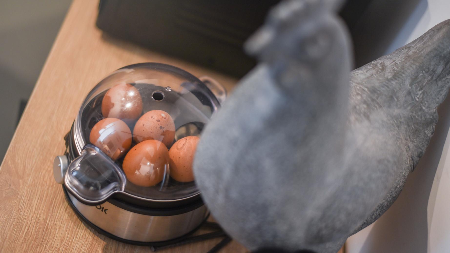 colazione uova.jpg