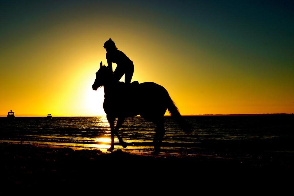 Giro a Cavallo sulla spiaggia