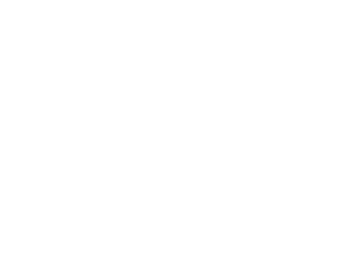 Datilgator_Logo_onecolor_white-01.png