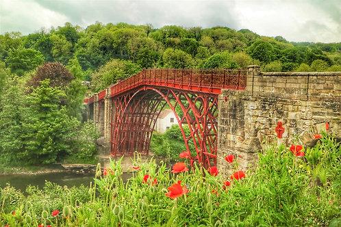 Ironbridge & Poppies A4 Mounted Print