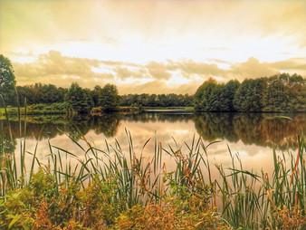Alderford Lake