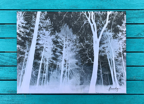 Winter Trees 1 (40 by 30)