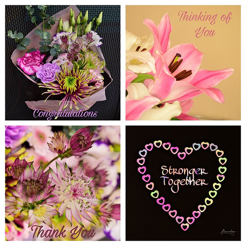 The Mixed Collection 3 - Greeting Cards