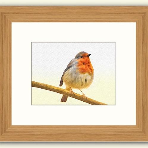 Robin Redbreast Photoart Framed Print