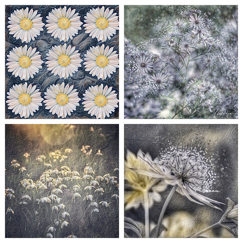 The Soft Hues Collection - Greeting Cards