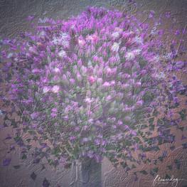 Textures of Allium