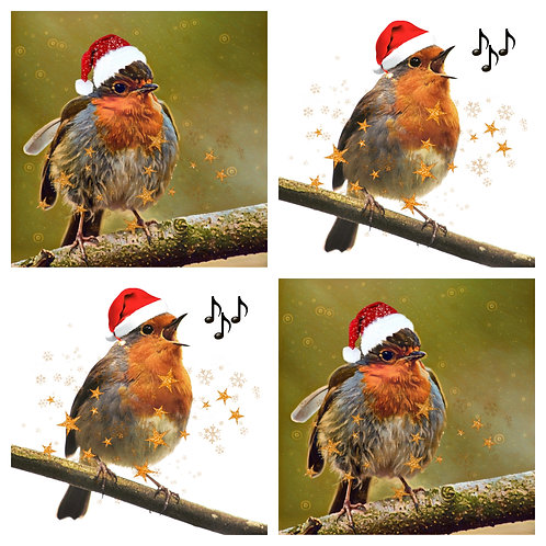 Robins in Hats