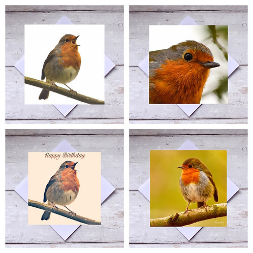 Robins - Greeting Cards