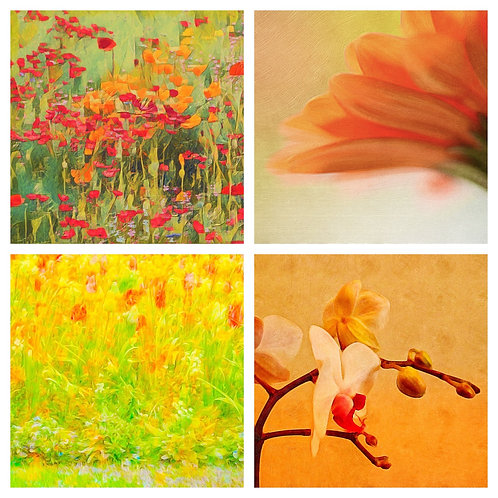 The Yellow Orange and Red Collection - Greeting Cards