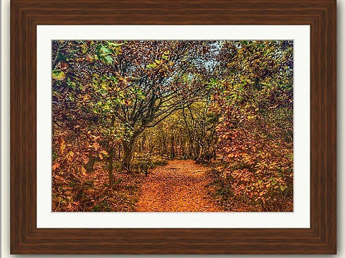 Haughmond Hill Framed Print