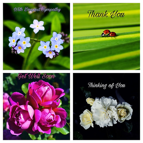The Mixed Collection 4 - Greeting Cards