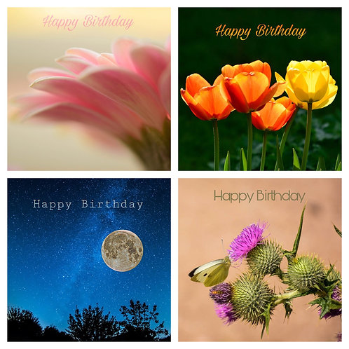 The Birthday Collection  - Greeting Cards