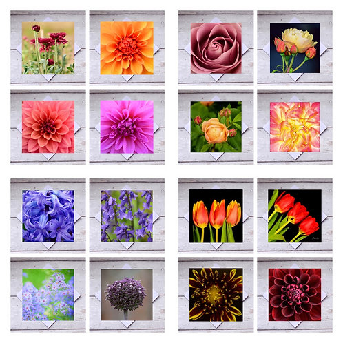 Flowers Mixed Bumper Pack - Greeting Cards
