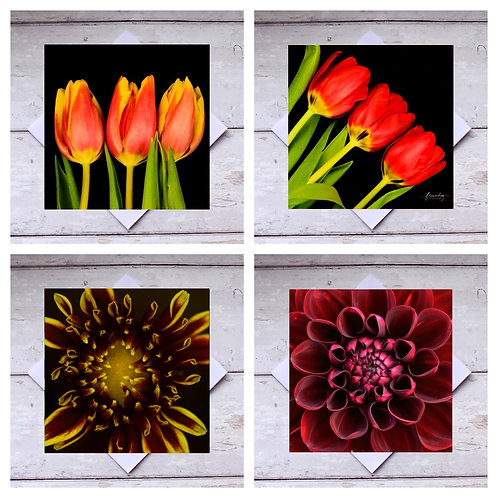 Flowers - Dark Collection Greeting Cards