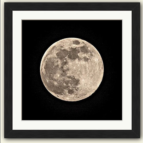 Whole of the Moon Framed Print