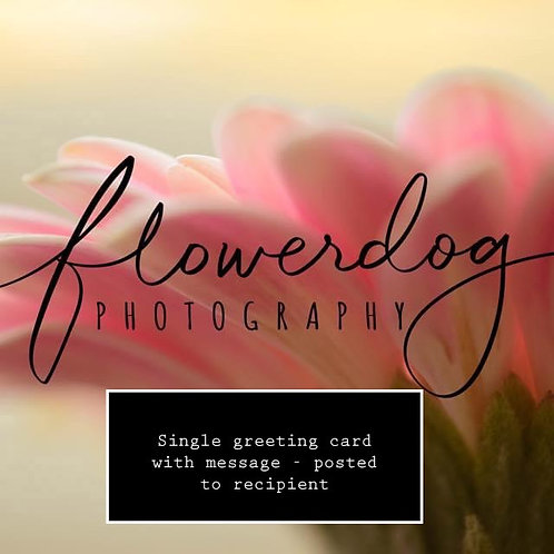 Single Greeting Card - with message - posted to recipient