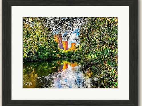 Nature v Industry Framed Print