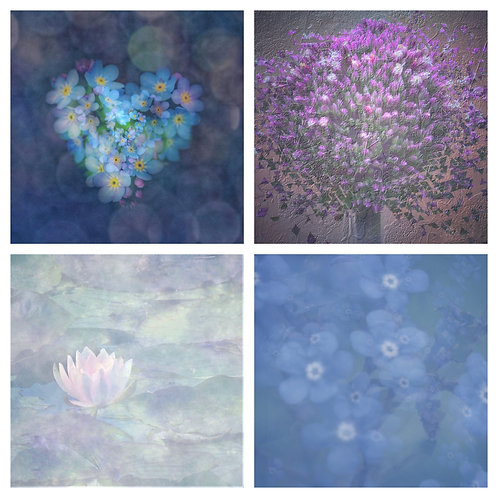 The Purples & Blues Hues Collection - Greeting Cards