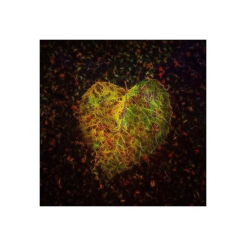 Leaf Heart Photoart Personalised eCard