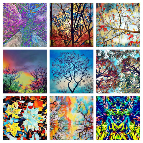 Photoart Trees.jpg