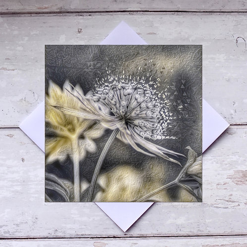 'Astrantia Abstract Photoart' Greeting Card