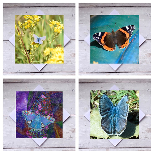 Butterflies 1 Greeting Cards