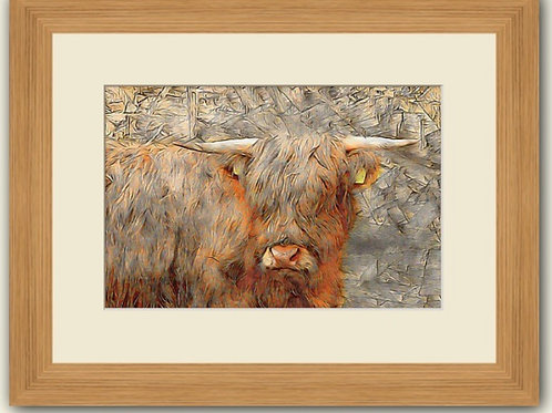 Textured Coo Photoart Framed Print