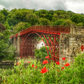 Ironbridge and Poppies