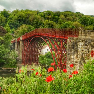 Ironbridge and Poppies