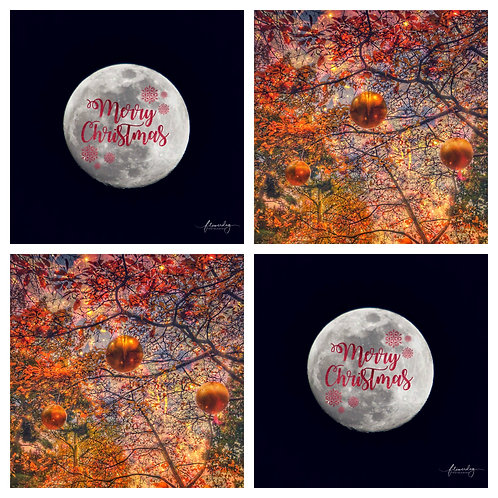 Baubles & The Moon - 2 Designs