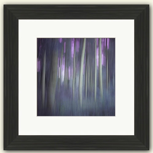 Mystical Trees Framed Print