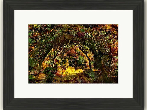 The Secret Garden Abstract Framed Print