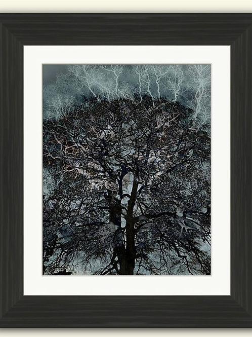 Lightening Tree Photoart Framed Print