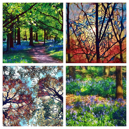 The Bluebell Woods and Abstracts Collection - Greeting Cards