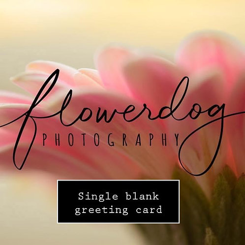 Single Greeting Card - You Choose