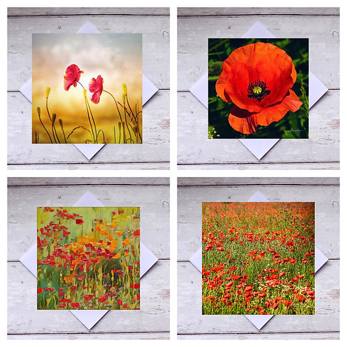 Poppies - Greeting Cards