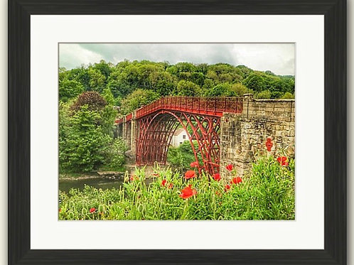 Ironbridge & Poppies Framed Print