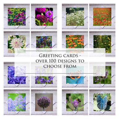 All Cards from my designs/ photographs