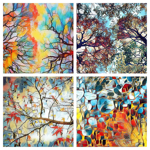 The Nature Abstract Collection - Greeting Cards