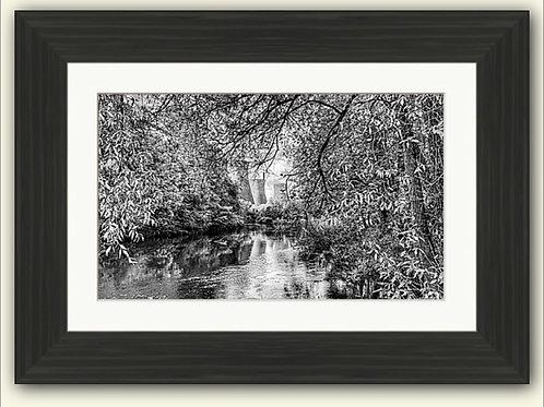 Nature v Industry Framed Print (B/W)