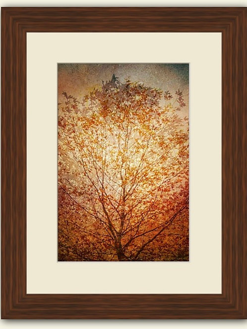 Autumn Tree Composite Framed Print