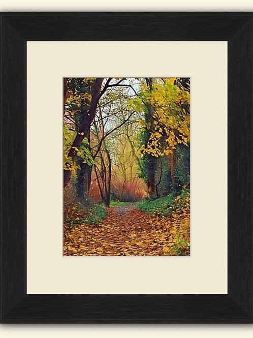 Autumn Walk to Dale End Framed Print