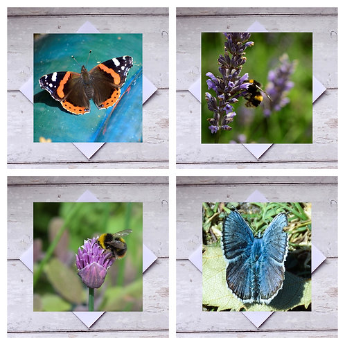 Butterflies & Bees 1 Greeting Cards