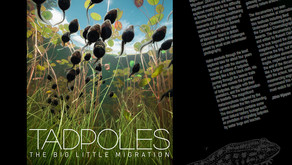 Tadpoles: The Big Little Migration (Documentary Review)